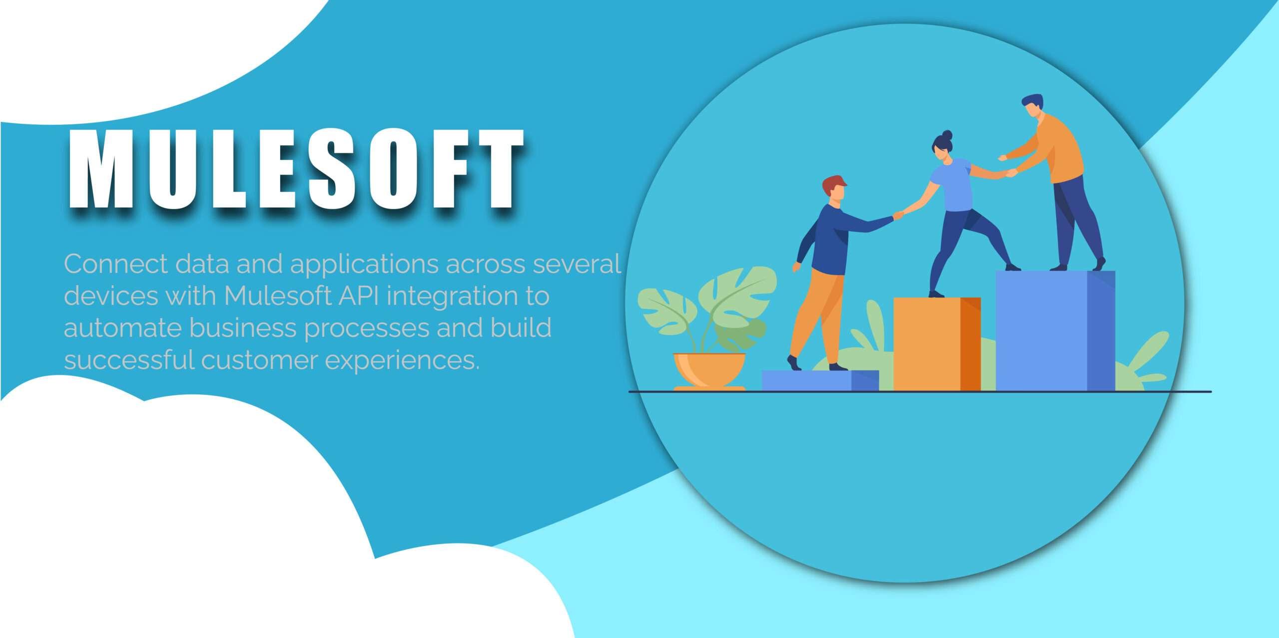 mulesoft salesforce services USA